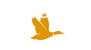 Drake Web Development